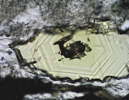 Alteration mineral assemblages in the margin closest to the veins. Well developed growing zonation in a cavity filling epidote crystal (1N)